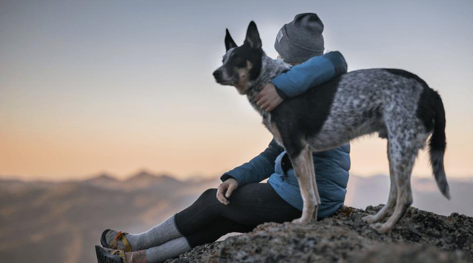 owner-hugging-pet-dog